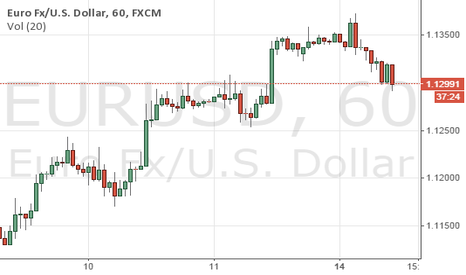 EURUSD: Shot EUR/USD