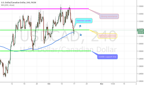 USDCAD: Usdcad in hammer candle and support line zone