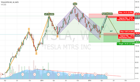 TSLA: TSLA possible Head & Shoulders + Elliott Wave