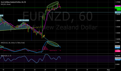 EURNZD: MACD Divergence?