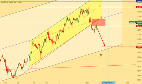 XAUUSD: Pullback for gold