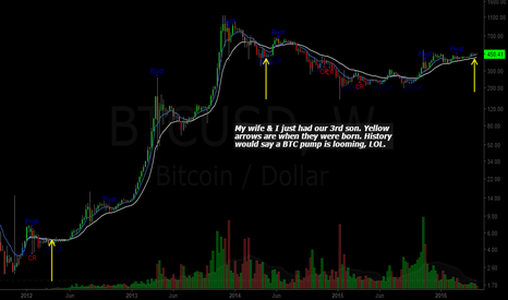 BTCUSD: Bitcoin (BTC): The Baby Indicator