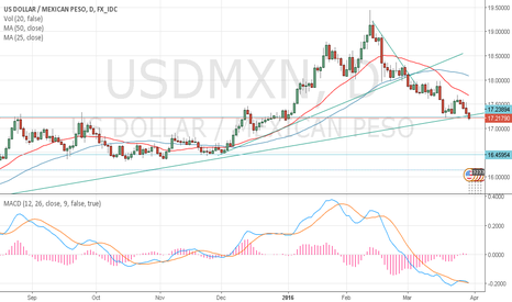 USDMXN: USD/MXN @ support level