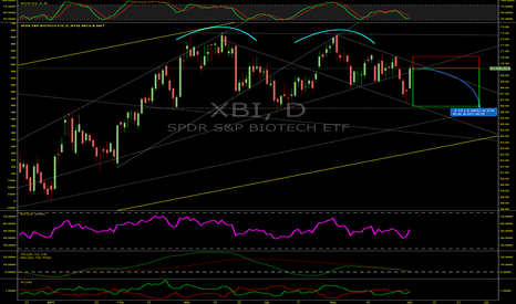 XBI: Biotech ETF Double Top Drop To Technical Support