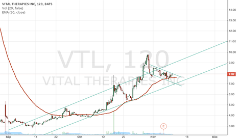 VTL: Look for flag breakout to the upside