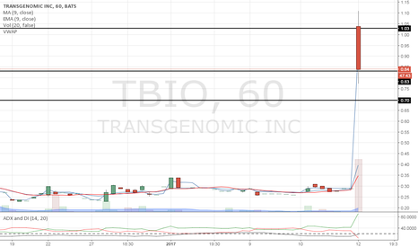 TBIO: Don't you love how the candle shows respekt!