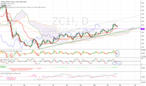 ZC1!: Look for a buy signal at 369-372 support!  $ZC