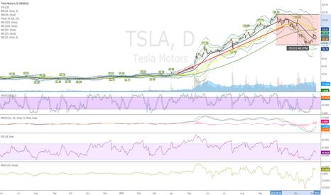 TSLA: Started TSLA relong