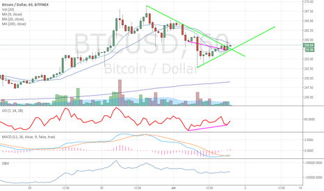 BTCUSD: BFX 1H bull div, bought the dip