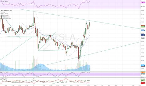 TSLA: TSLA Testing it's resistance again