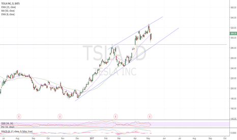 TSLA: WE'LL BE IN THIS CHANNEL FOR A WHILE