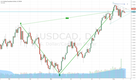 USDCAD: USD CAD 1 32000 is the key area for the cad
