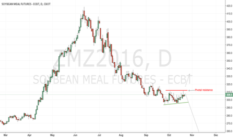 ZMZ2016: CBoT soyameal still a short but no margin at the upside