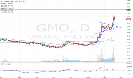 GMO: GMO- Potenital flag formation Long
