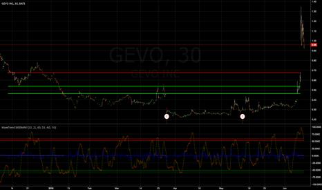 GEVO: Worries me