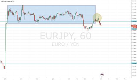 EURJPY: EUR/JPY: UPDATE