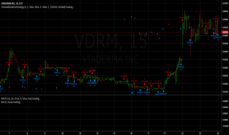 VDRM: We could lose 30 percent today and I would not be worried