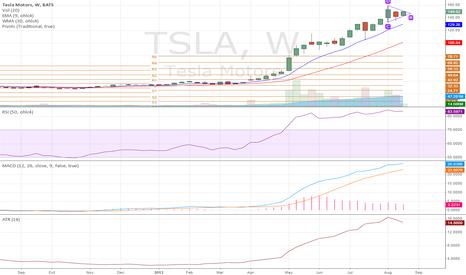 TSLA: Tesla Weekly Chart