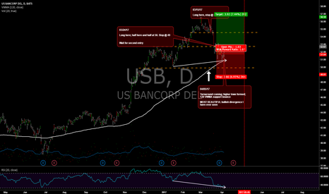 USB: USB Long Entry Swing