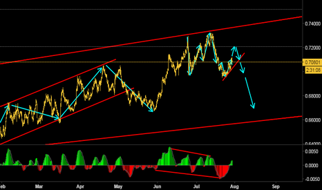 NZDUSD: A possible downside move