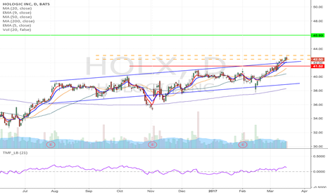 HOLX: HOLX - Inverse head & shoulder formation Long from $43 to $45.93