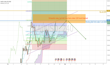 XAUUSD: Gold facing exhaustion area, more fundamental support needed