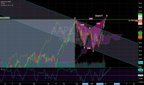 AAPL: Shark on AAPL?