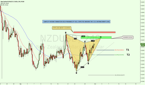 NZDUSD: Gartley Pattern formation on the 4 hour chart
