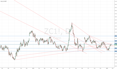 ZC1!: Corn still being a tease