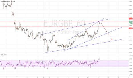 EURGBP: eurgbp fall
