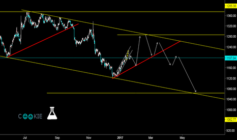 XAUUSD: how cookie monster works??...