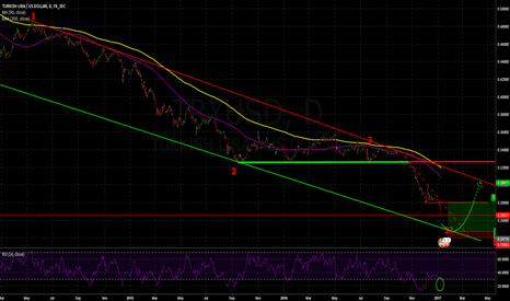 TRYUSD: Soon an anticyclical long?