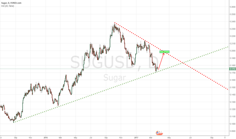 SUGUSD: Long Sugar once support by long term support line