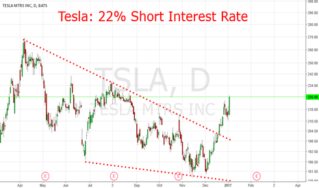 TSLA: Tesla: 22 % Short Interest Rates