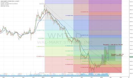 WMT: Walmart long idea