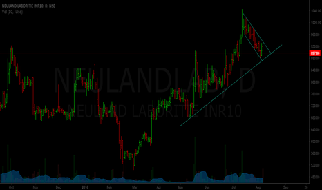 NEULANDLAB: Neuland labs - nearing support zone