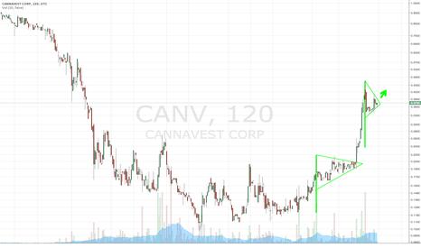 CANV: $CANV Textbook Bull Pennant