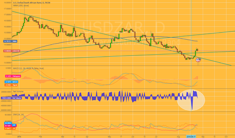 USDZAR: USD/ZAR Far negative net volume level !!!!