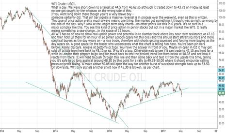 USOIL: USOIL: WTI Crude is a buy again - see that pin bar? 48.38 target