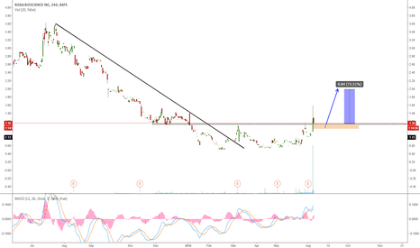 ROKA: ROKA RETRACING FOR A NEW WAVE UP?