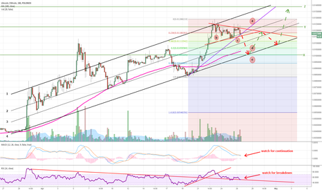LTCBTC: Litecoin to correct short term then continue up to old highs