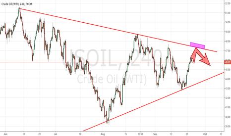 USOIL: 23.09.16. Crude OIL WTI