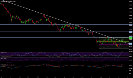 XPTUSD: Platinum breaks out of long term downward sloping trendline.