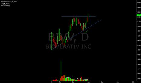 BIVV: Breakout