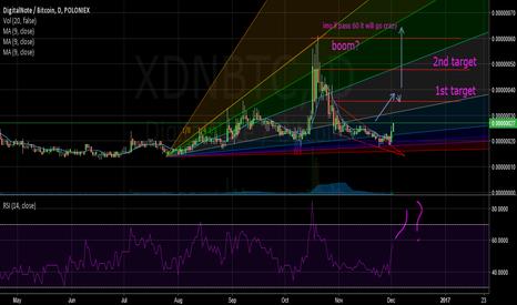XDNBTC: first chart