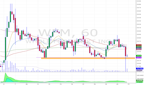 WFM: breakdown in hourly chart