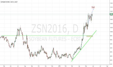ZSN2016: Soybeans CBoT