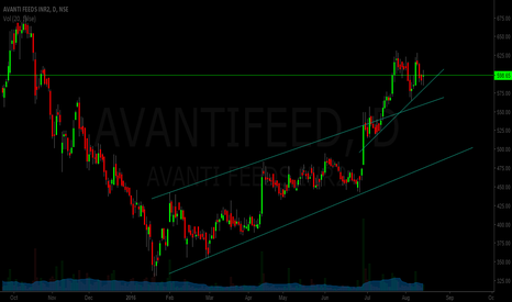 AVANTIFEED: Avanti Feeds - head and shoulder formation