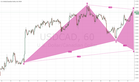 USDCAD: POSSIBLE BULLISH GARTLEY PATTERN