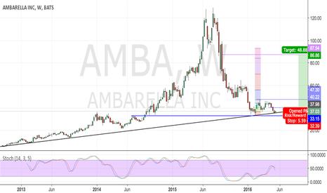 AMBA: Ambarella Support?... Risk/Reward is worth a Go (Pro)
